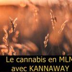 Le cannabis en MLM existe maintenant avec KANNAWAY. Découvrez la méthode simple pour vous faire connaître