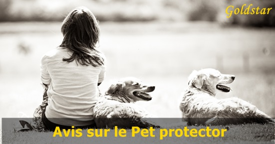 Avis Goldstar Pet Protector
