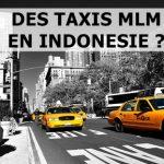Taxi MLM, la nouvelle mode en Indonésie ? Attention, 3 critères avant de vous embarquer…