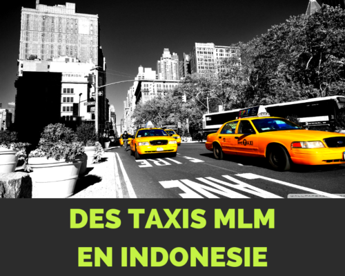 Taxi MLM Indonésie visiter Bali - www.reussirsonmlm.com
