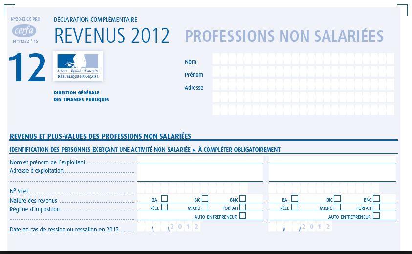feuille impot formulaire cerfa statut VDI - www.reussirsonmlm.com