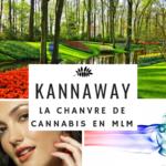 KANNAWAY -- Quand une entreprise de MLM propose le Cannabis… NE LA REJOIGNEZ PAS avant d'avoir lu la suite !