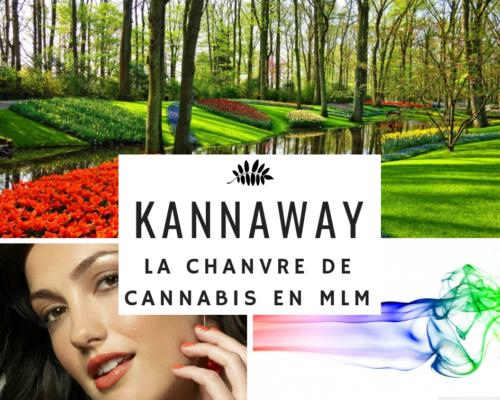 Cannabis MLM Kannaway - www.reussirsonmlm.com