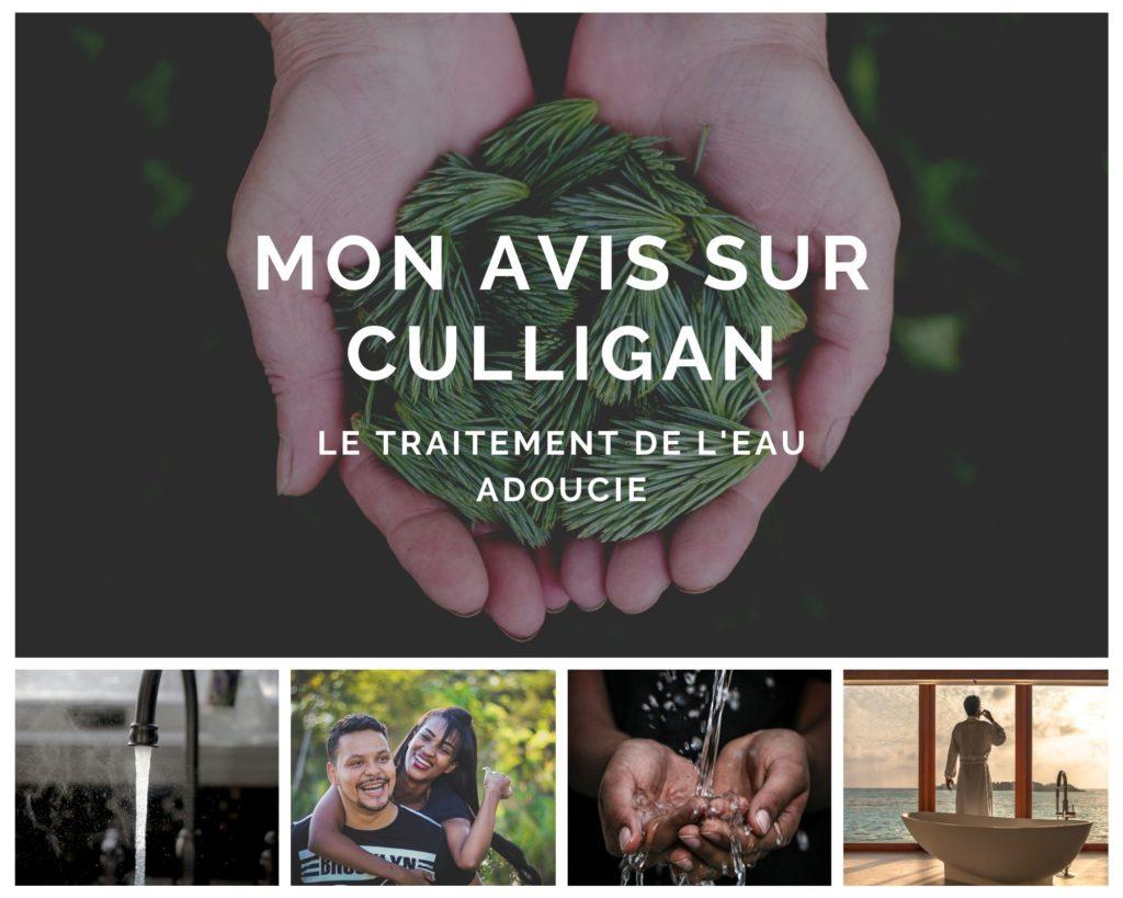 Culligan eau adoucie - www.reussirsonmlm.com
